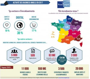Rapport France Angels 2017